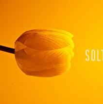 SOLTAR CON AMOR